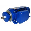 Silnik jednofazowy \'\'jamnik\'\' 2,2 kW 2790 - Lewy